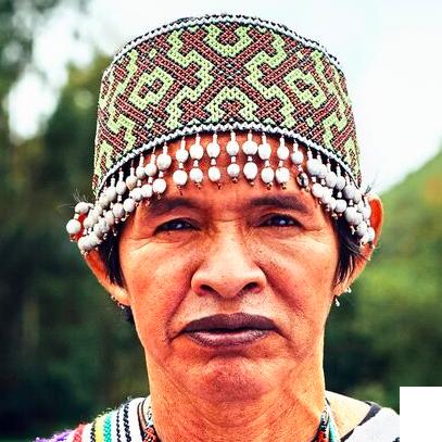 Willkamayu Maestro